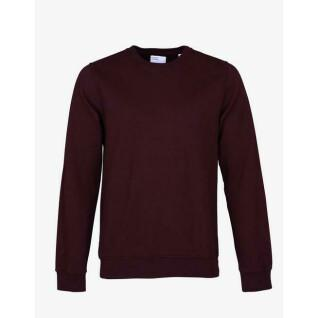 Sweatshirt Colorful Standard crew Oxblood Red