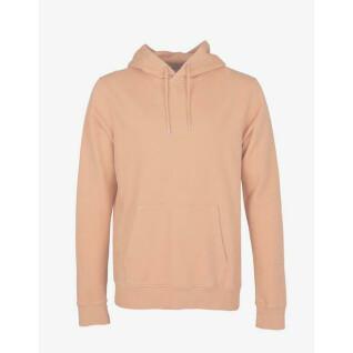 Sweatshirt à capuche Colorful Standard Paradise Peach